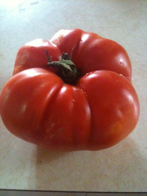 Try something you use to hate. I DESPISED TOMATOES! For all of my life. I finally gave them a chance. One of my MUST HAVE foods now!