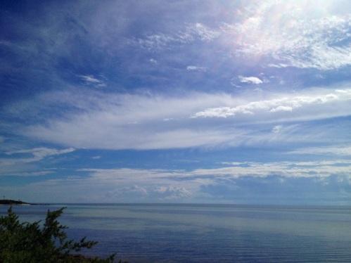 20121106-122041.jpg