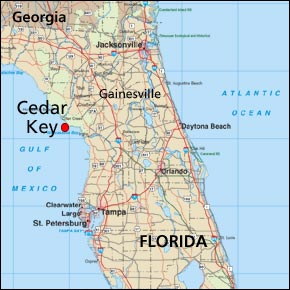 overview_florida