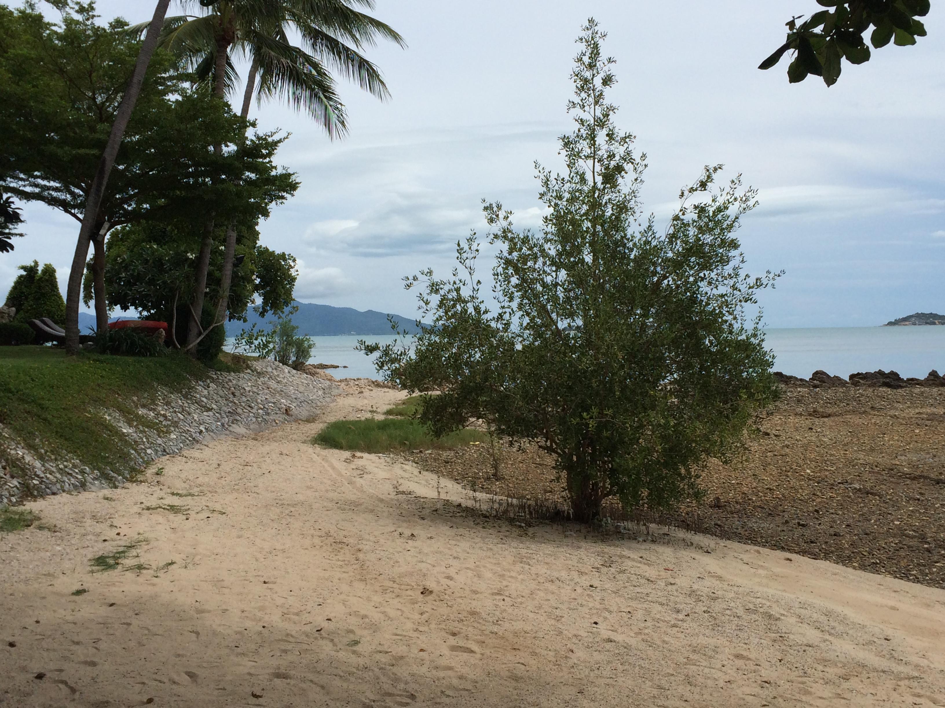 thailand317